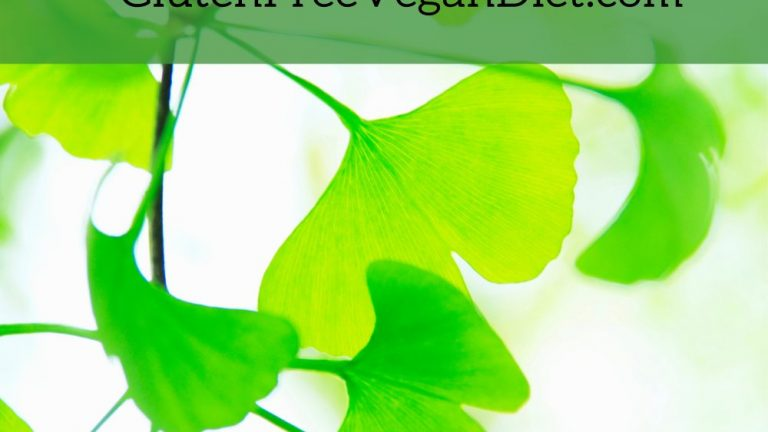 The Beginner's Guide to The Benefits of Taking Maidenhair Tree Seed