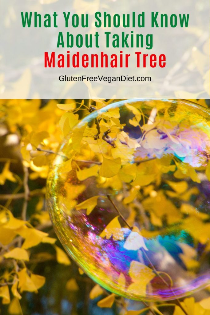 what to know about taking maidenhair tree